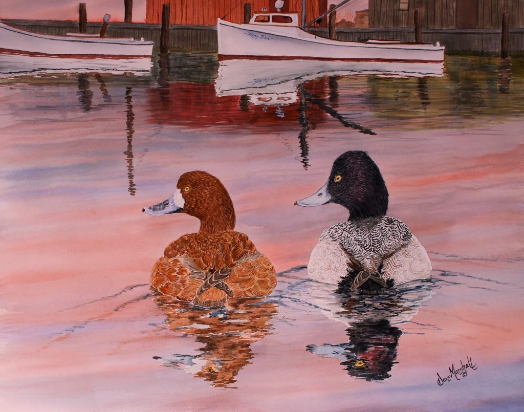 Image of Dave Marshalls Original Watercolor Harbor Swim